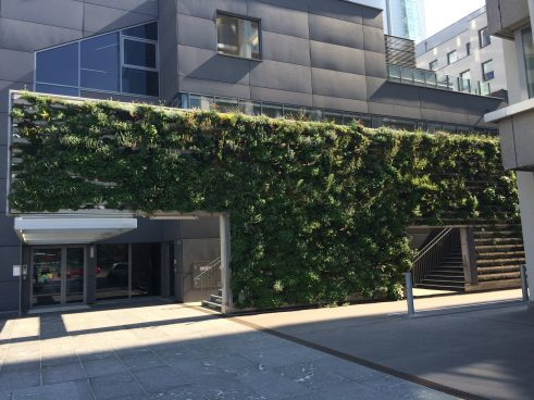 A building with leafage on the wall