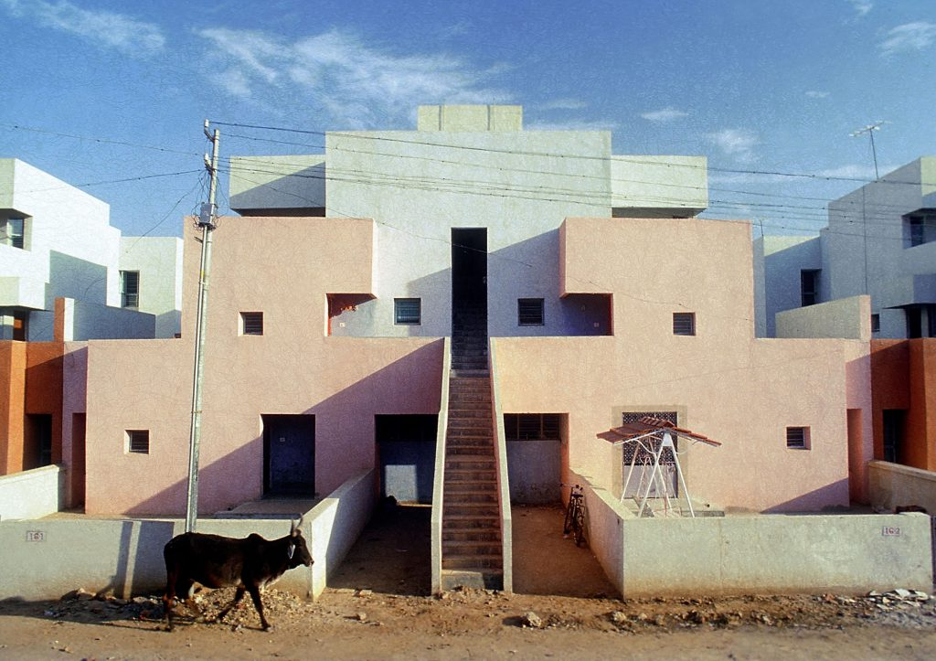 A cow in front of building