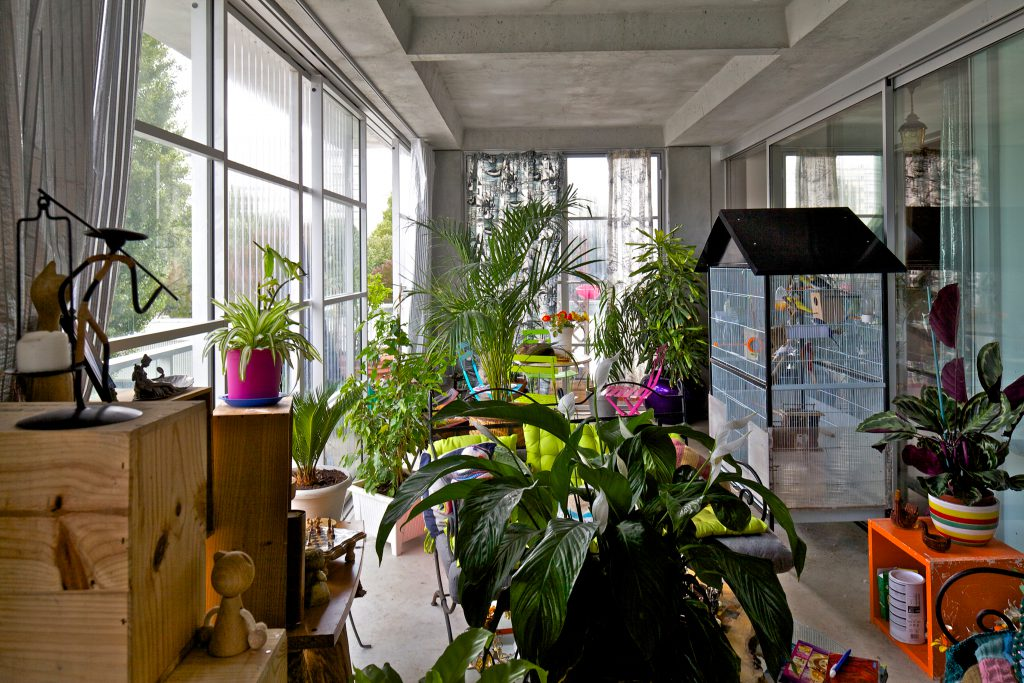 Raum mit vielen Pflanzen und großem Vogelkäfig