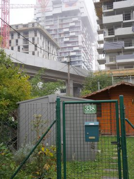 Allotment garden with high-rise building behind