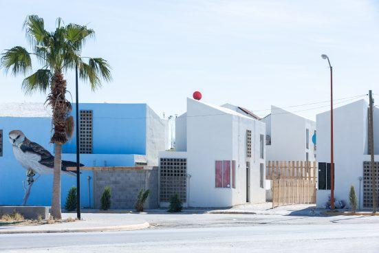 Häuser in weiß und blau, auf einem Haus ist ein großer Vogel aufgemalt, davor steht eine Palme