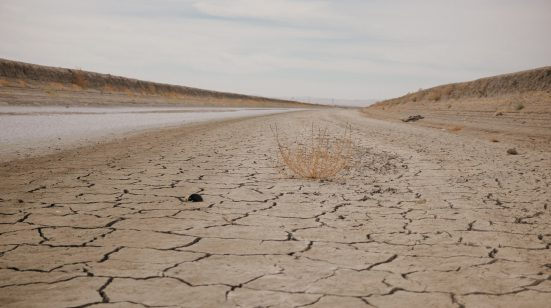 Dried up withered earth with a road leading through it